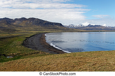 Icelaned and ocean coast