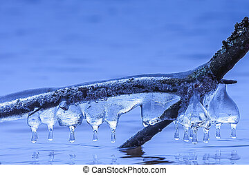 Icicle formations on a branch of a tree over the lake