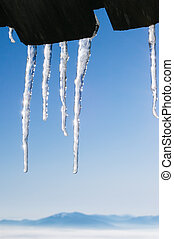 Icicles against the sky