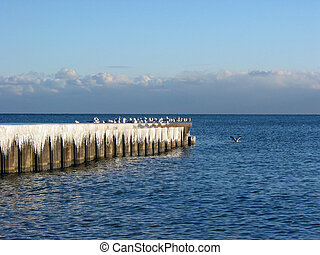 Icicles and seagulls on a pier