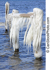 Icicles on a wooden fence at the Baltic Sea, Western Pomerania Lagoon Area National Park, Darss near Prerow, Mecklenburg-West Pomerania, Germany