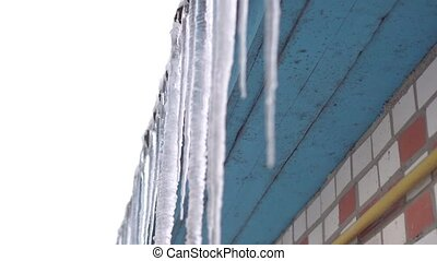 Icicles grow on the roof of a building