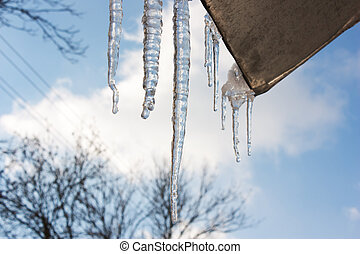 Icicles hang from the roof,