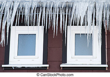 Icicles in front of two windows - Many icicles in front of ...