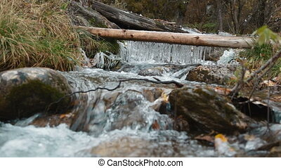 Icicles in the stream