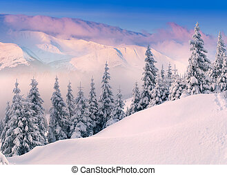 iColorful winter sunrise in the mountains.