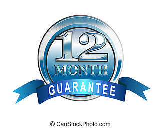 Illustrated chrome icon of the words 12 month guarantee set inside a circle and ribbon banner done in retro style.