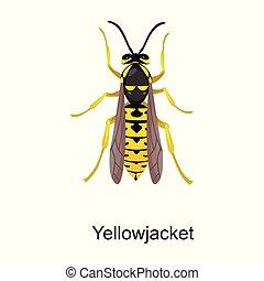 icon., achtergrond, vrijstaand, hornet, hornet., pictogram, vector, spotprent, witte