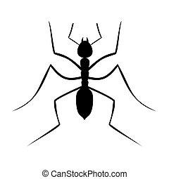Icon ant