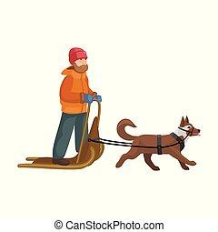 icon., fondo, slitta, isolato, icona, vettore, cartone animato, sled., cane, bianco