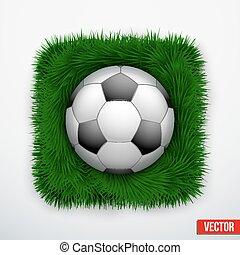 Icon football ball in green grass. Vector.