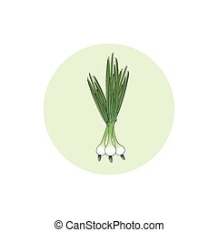 Icon green onion,vector illustration