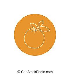 Icon Orange in the Contours