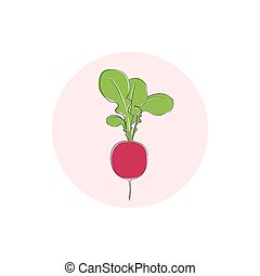 Icon radish vegetable with leaves ,vector illustration