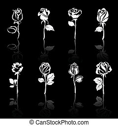 Icon set of flowers Roses with reflections, on black background