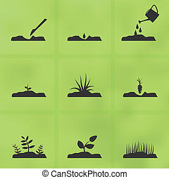 Icon set stages of how to grow a plant from seeds. - Set of...
