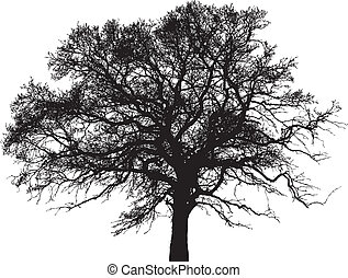 vector silhouette of tree - icon vector silhouette of tree
