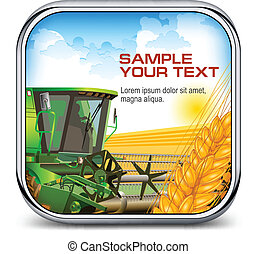 Icon with ear wheat & harvester and text, agricultural...