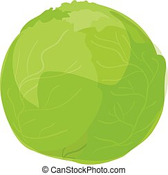 icona, cavolo, verde, stile, cartone animato