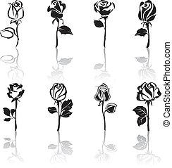 icona, set, di, rose, con, riflessioni