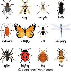 icone, insetti