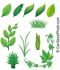 icono, conjunto, de, hojas verdes, y, plantas