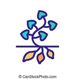 icono, ilustración, planta, vector, papa dulce, contorno
