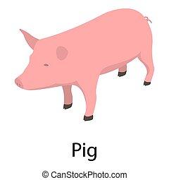 icono, isométrico, estilo, cerdo