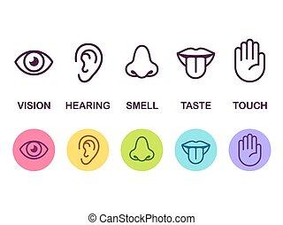 icono, sentidos, conjunto
