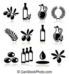 iconos, aceite, rama, aceituna