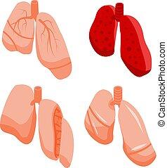 iconos, estilo, pulmón, conjunto, isométrico