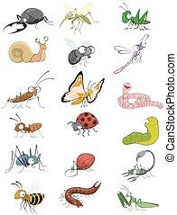 iconos, insectos, conjunto