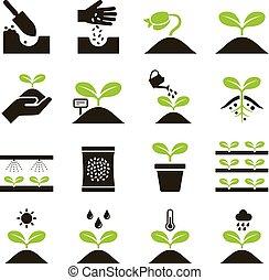 icons., 植物, ベクトル, illustrations.