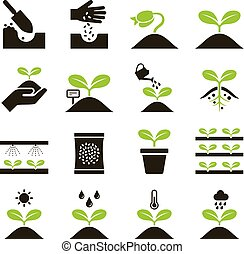 icons., planta, vector, illustrations.