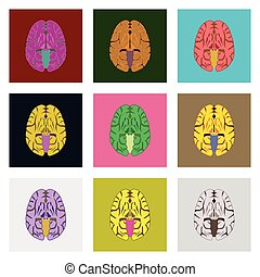 icons set in flat style human brain