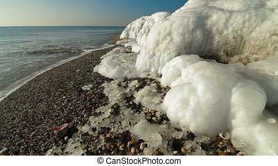 Icy Coast With Seashell