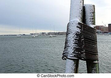 icy dock posts