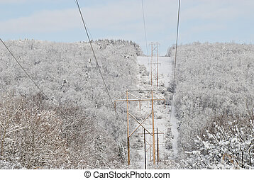 Icy Landscape - Trees covered with ice surrounding power...