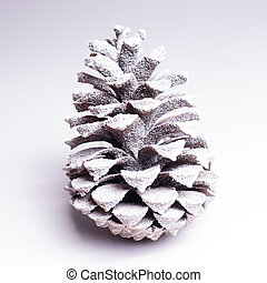 icy pinecone on white background