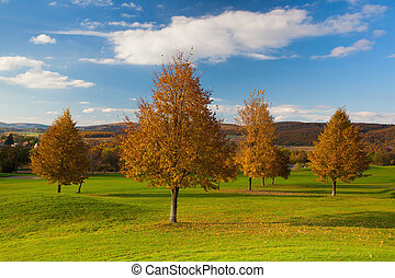 idílico, otoño, paisaje