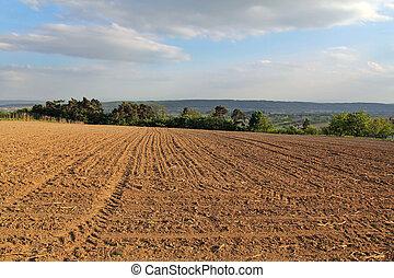 idílico, paisaje rural