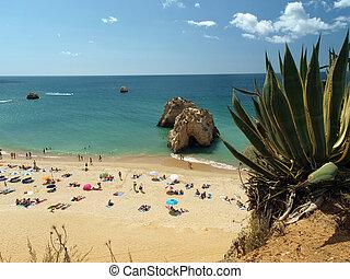 idílico, sección, de, region., praia, algarve, rocha, playa