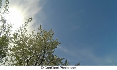 idő megszűnés, cloudy ég