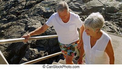 idősebb ember, gyalogló, párosít, emeleten, tengerpart, 4k