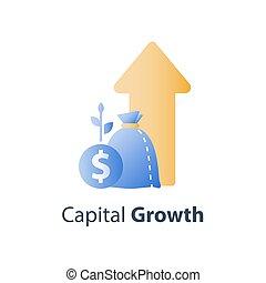 időszak, anyagi, előny, állami bevétel, allocation, szilárd,...