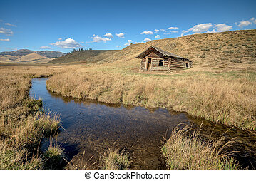 Idaho log cabin falling into the earth near a stream