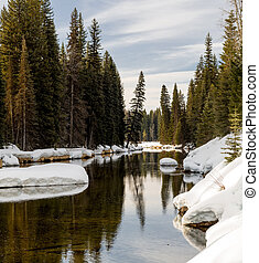 Idaho mountain river flows through a winter forest with snow on the ground