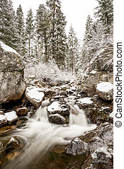 Idaho river in winter with snow and trees