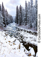 Idaho wilderness river in winter with snow on the ground