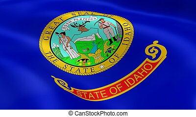 Idahoan flag in the wind. Part of a series.